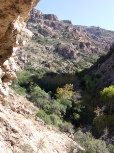 View from the Cliff Dwellings/Rogers Canyon ©sshicks